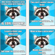 Pun Meme - meme generator lame pun raccoon image memes at relatably com