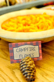 best 25 backyard camping parties ideas on pinterest camping