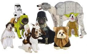 Star Wars Halloween Costumes Star Wars Halloween Costumes Boys Hubpages