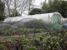 Urban Horticulture Wikipedia
