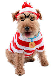 costumes for dogs waldo woof dog costume
