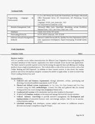 Access Database Developer Sample Resume Access Developer Template