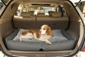 dog car beds