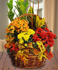 Halloween Gift Basket Ideas by Novi Michigan Shop Flowers Florists Novi Michigan