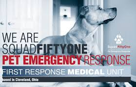 squad fiftyone pet emergency response sq51 2015 crowdfunding