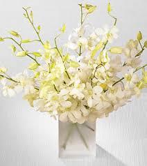 white dendrobium spray 125 00 boca orchids florist orchid