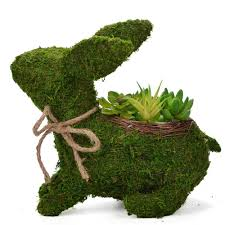 Topiary Frames Online Amazon Com Byher 12 Inch Topiary Frame Handmade Animal Moss Bunny