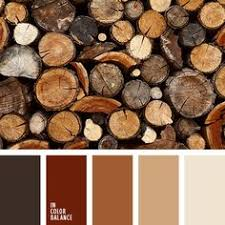 контрастное сочетание теплых и холодных тонов коричневый и черный