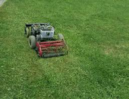Lawn Mower Meme - first test of a remote controlled lawn mower gif on imgur