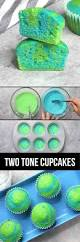easy 2 tone cupcakes recipe with video tipbuzz