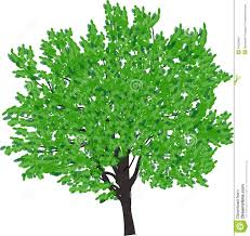 brown tree with bright green leaves stock vector image 46228360