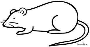 imagenes de ratones faciles para dibujar raton dibjo imagui