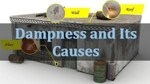 House Technology by Dampness And Its Causes Common Causes Of Dampness In Your House