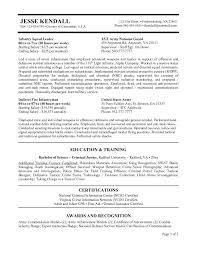 Ideal Resume For Someone With by A Federal Resume Sample For Someone With Education Experience