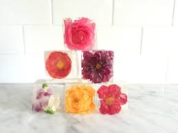 edible flower garnish how to cook with edible flowers my scoop