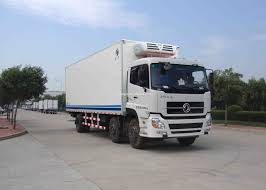 25degress 6 10tons thermo king dongfeng frozen food truck