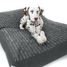 Dog Igloo Chew Resistant Dog Beds Kong Nice Dog Beds Uk Noten Animals Large