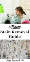 How To Clean Mildew In Bathroom Mildew Stain Removal 2 Large Jpg