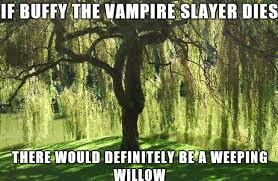 tree puns that ll leaf you in awe viraluck
