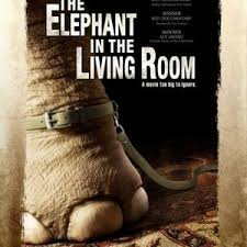 in the livingroom the elephant in the living room 2011 rotten tomatoes
