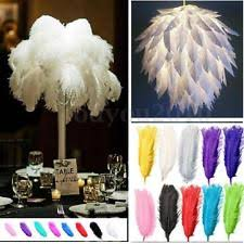 Ostrich Feathers For Centerpieces by Large Ostrich Feathers Ebay