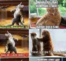 Meme Kucing - story kucing lewat 1cak for fun only