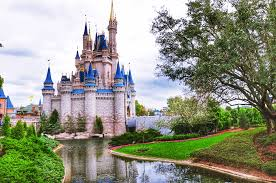 what you need to know about magic kingdom party nights living by