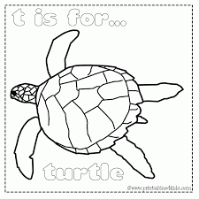 sea turtle pictures kids coloring