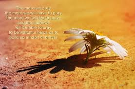 in prayer with thanksgiving and prayer companions