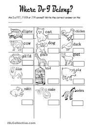zoo animal worksheets worksheets