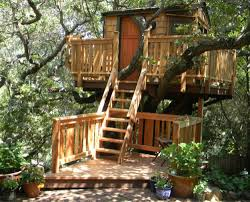 tree houses with a deck pictures