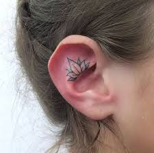 collection of 25 inside the ear