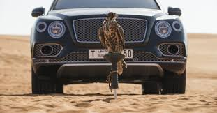 bentley bentayga falconry accessories launched carmagram