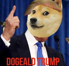 Donald Meme - the daily blubb donald trump meme donald trump memes donald trump