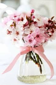 6046 best pretty in pink images on pinterest