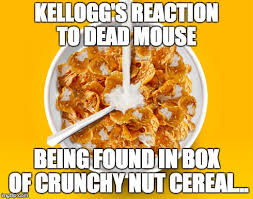 Corn Flakes Meme - meme d from the headlines breakfast cereal comes with dead mouse