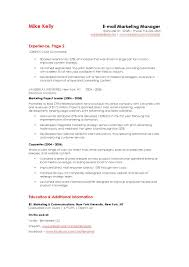 digital marketing resume sle digital marketing resume digital marketing manager