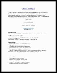 Best Resume Formate by The 25 Best Good Resume Format Ideas On Pinterest Good Resume