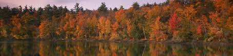 hampshire beckons fall colors complimentary karen brown u0027s