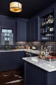 navy blue kitchen cabinet pulls pin on pantry