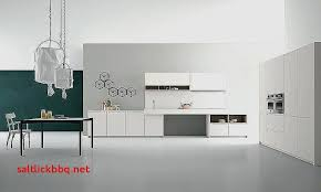 cuisine moderne taupe couleur vert anis et taupe pour decoration cuisine moderne