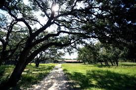 halloween city flower mound tx 7 texas towns make u0027america u0027s top 100 safest cities u0027 list for 2017