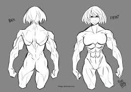 study female muscle anatomy by lokigun on deviantart