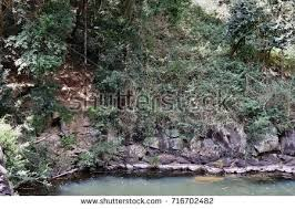 Gardeners Falls Maleny - gardners falls stock images royalty free images u0026 vectors