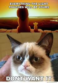 Grump Cat Meme - grumpy cat everything the light touches will be yours weknowmemes