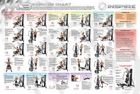 Bench Press Program Chart Bowflex Workout Chart Images Reverse Search