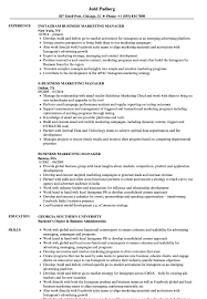 marketing manager resume exles business marketing manager resume sles velvet