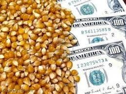 Grandes bancos están tras el aumento de precios de los alimentos Images?q=tbn:ANd9GcQpNShA6183Bb7LqMYKWbUUgFpkvf1MwXw9xW-Bxlb08GqEScd9