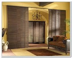 Sliding Panel Curtains Divider Extraordinary Sliding Panels Room Divider Sliding Room