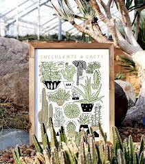 botanical sts succulents cacti 11x14 botanical print worthwhile paper